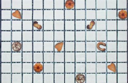 Mozaik COOKIES