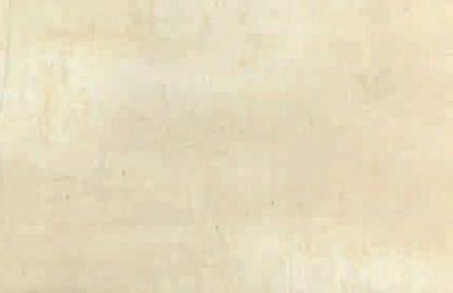 Keramične ploščice 20×50 Crema